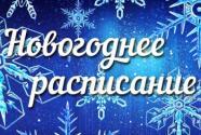 силаруков - новогоднее расписание
